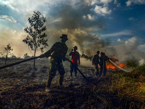 Forest and land fire task force officers try to douse a fire with water pipes at a palm oil plantation in Pekanbaru, in Riau province, Indonesia, July 20, 2019.