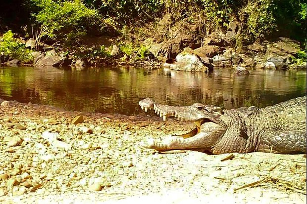 UNESCO Adds Thai Park to World Heritage List, Amid Karen Rights Concerns